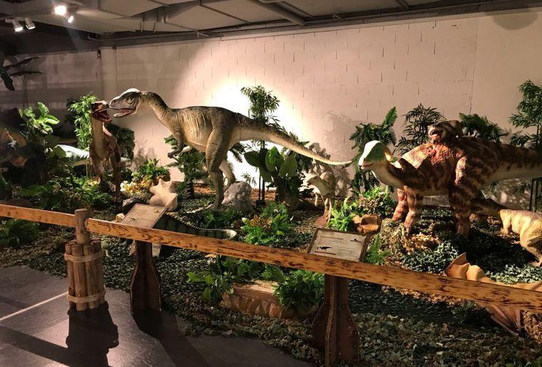 Dinosauria-chaux-de-fonds