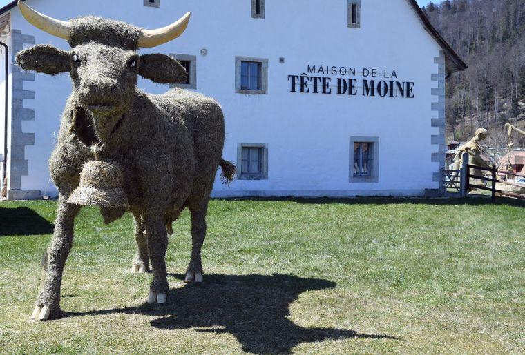 maison-tete-de-moine-bellelay-sculptures-foin-vache.jpg