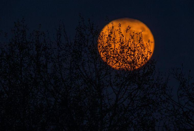 halloween-lune-nuit-2016_2000.jpg