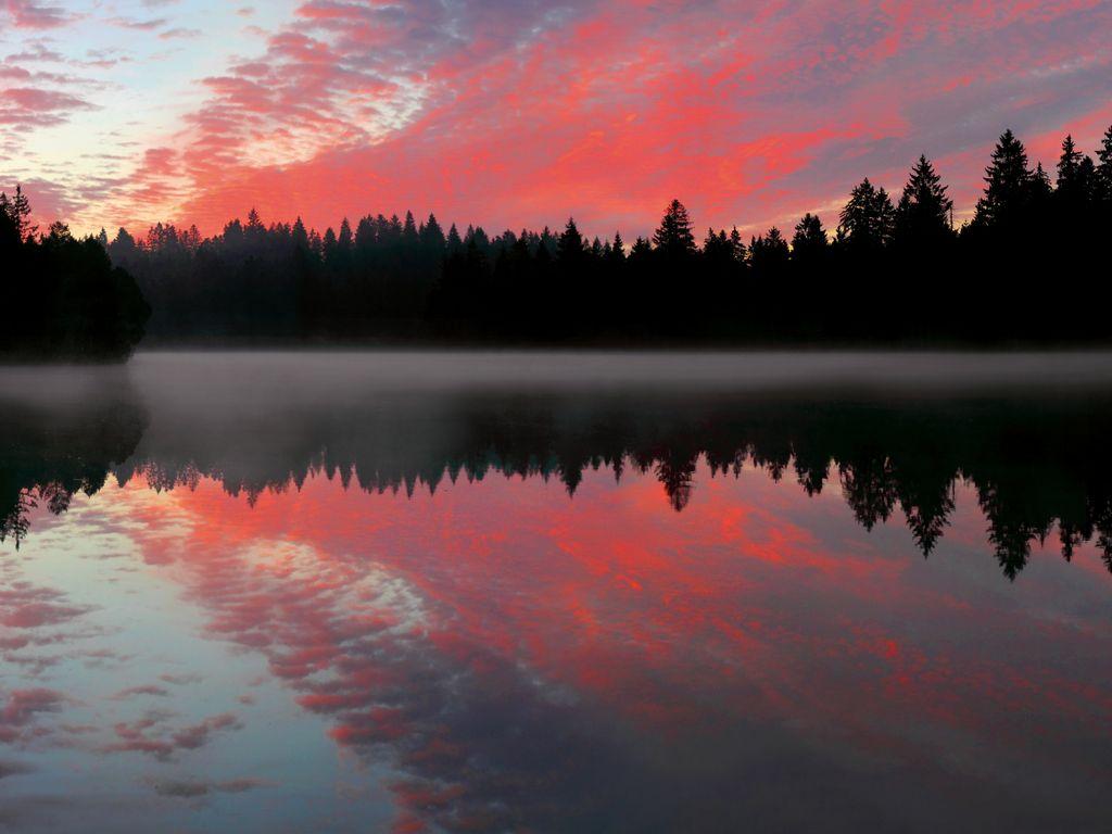 Balade au fil de l'eau - Au coeur des Franches-Montagnes, l'étang de Gruère s'impose comme l'un des plus beaux sites naturels de Suisse romande