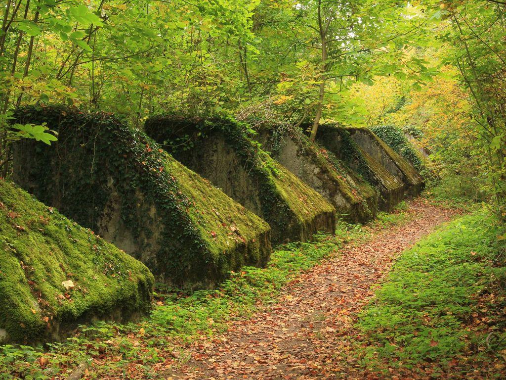 Balade insolite le long du sentier des Toblerones, fameuses défenses anti-chars héritées de la Seconde Guerre mondiale