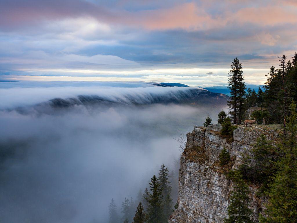 Balade panoramique - Le Creux du Van et son spectaculaire cirque de falaises forment un véritable canyon suisse