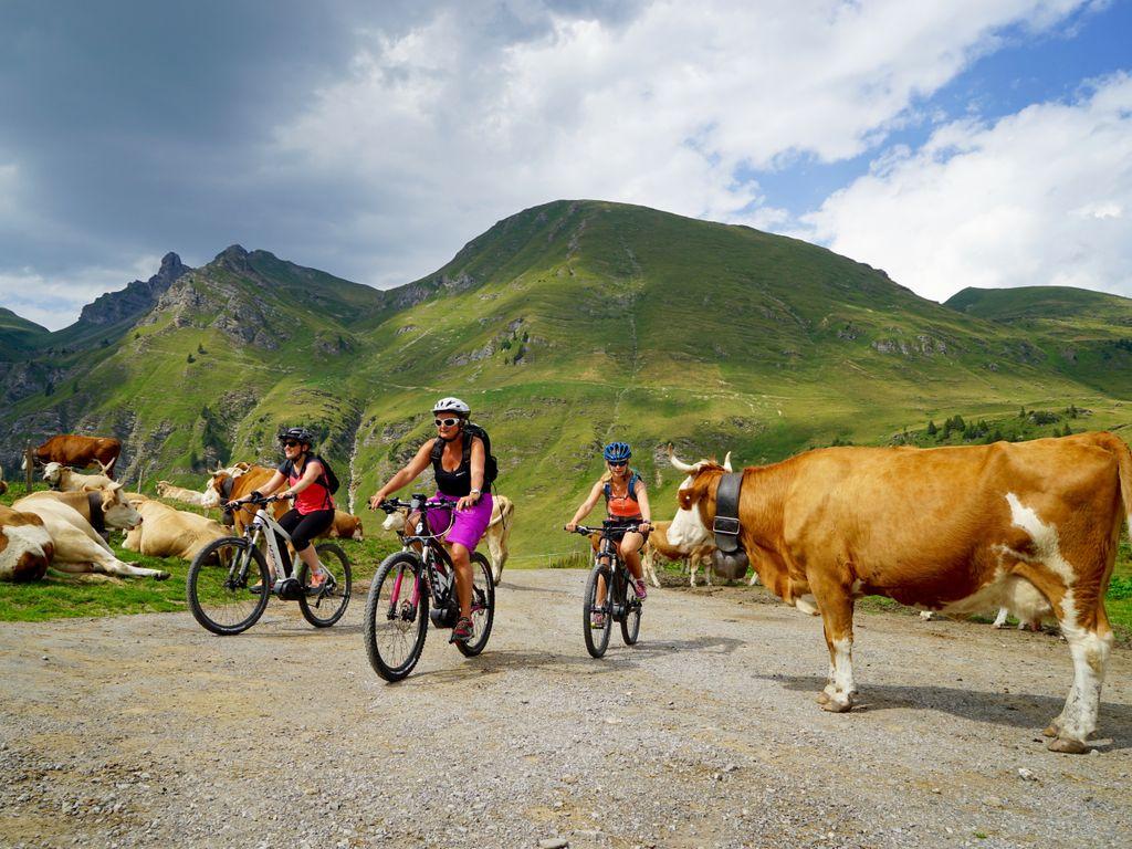 E-bike en Suisse romande - Les plus belles balades avec location pour découvrir le vélo électrique – Isenau Bike au départ des Diablerets