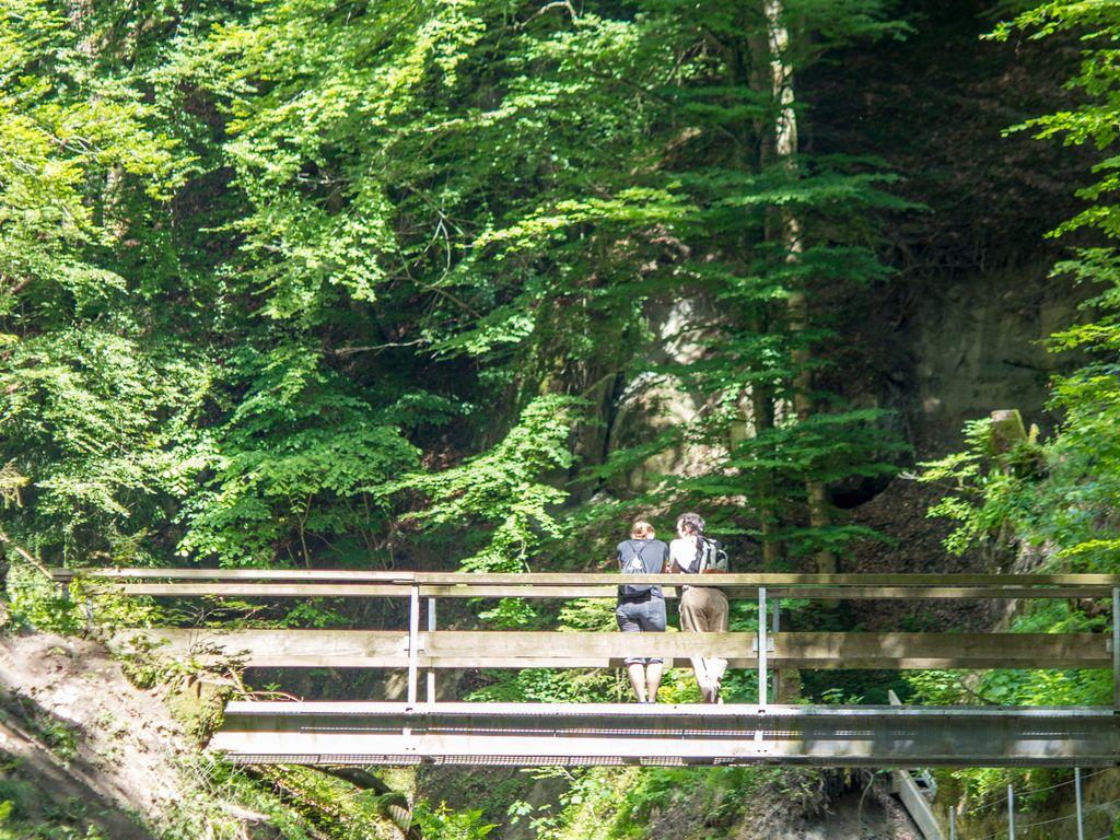 Balade fraîcheur dans les gorges du Gottéron à Fribourg
