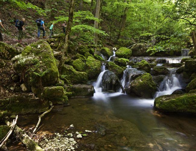 Les plus belles gorges naturelles de Suisse - Gorges de Douanne (Twann)