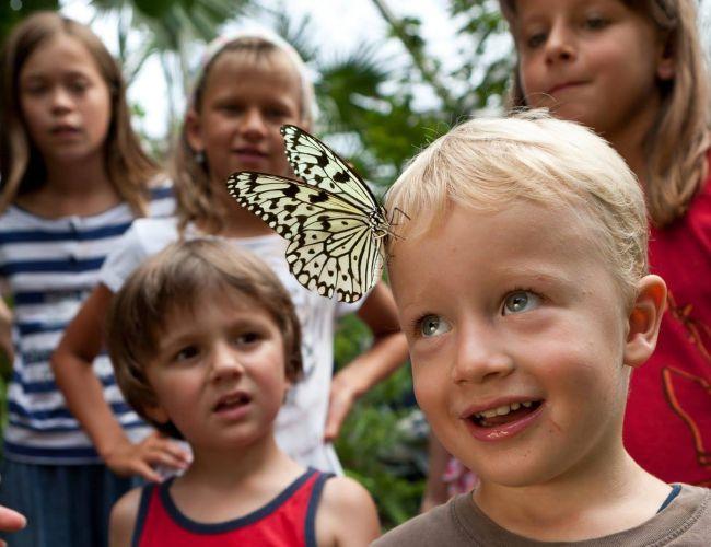 Les meilleurs zoos de Suisse - Papiliorama