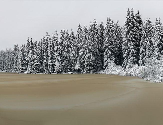 Sites hivernaux féeriques de Suisse romande: Etang de la Gruère