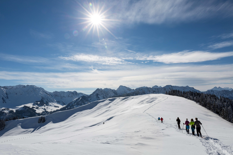 Winterwandern Region Fribourg Freiburg