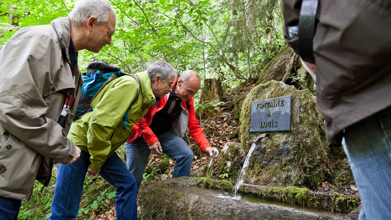 Louis-Brunnen auf dem Absinth-Weg / Val-de-Travers