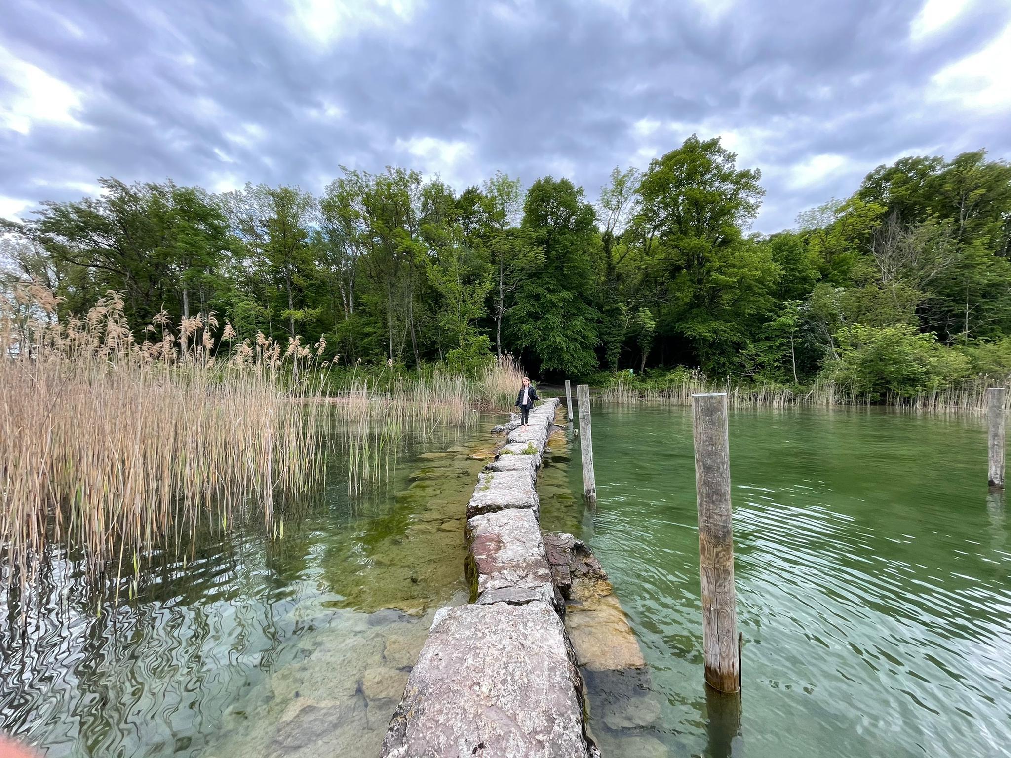 Voyage de la famille Cavadini: lac de Bienne