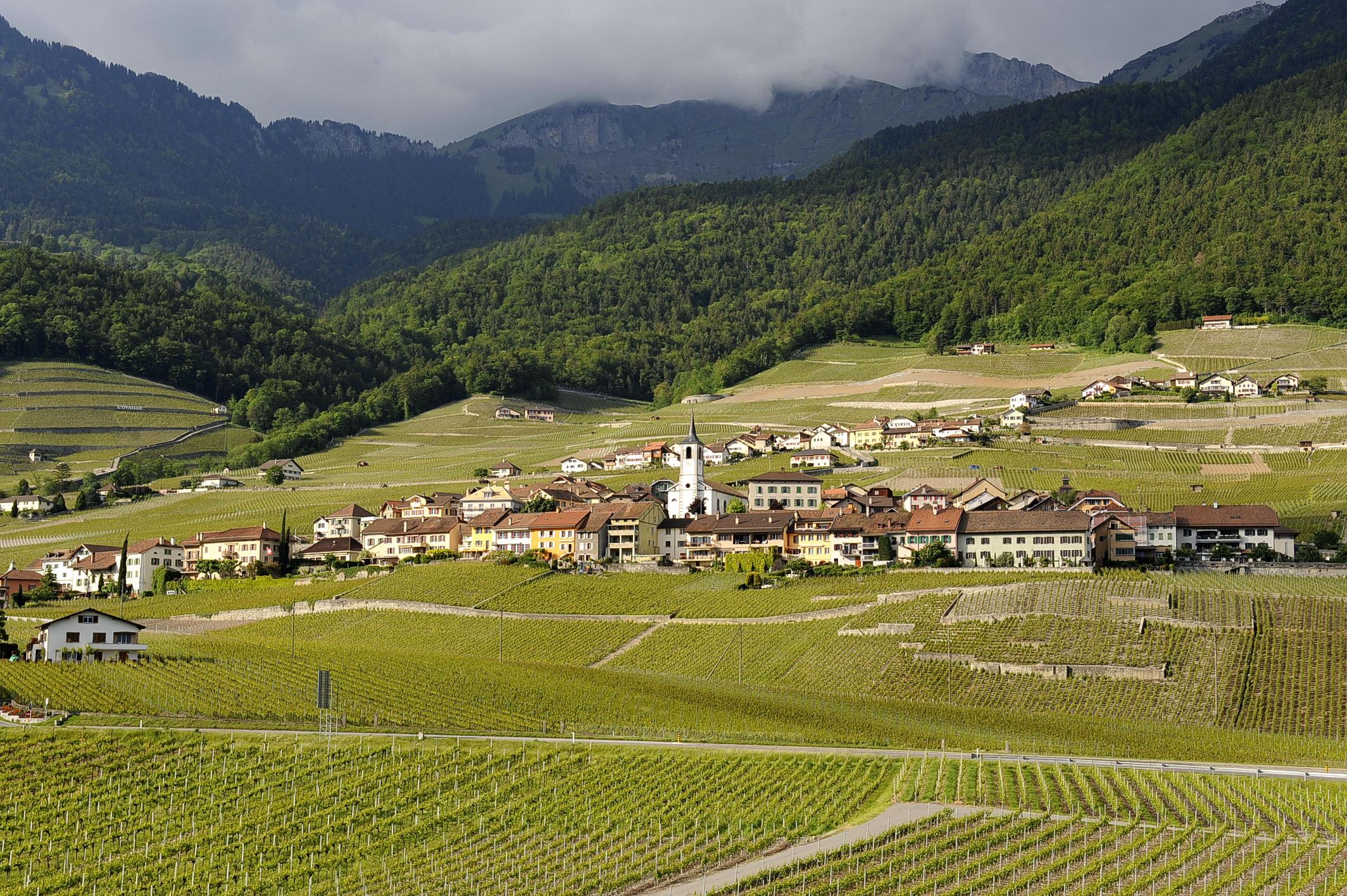 Les plus beaux villages de Suisse romande - Yvorne (Vaud)