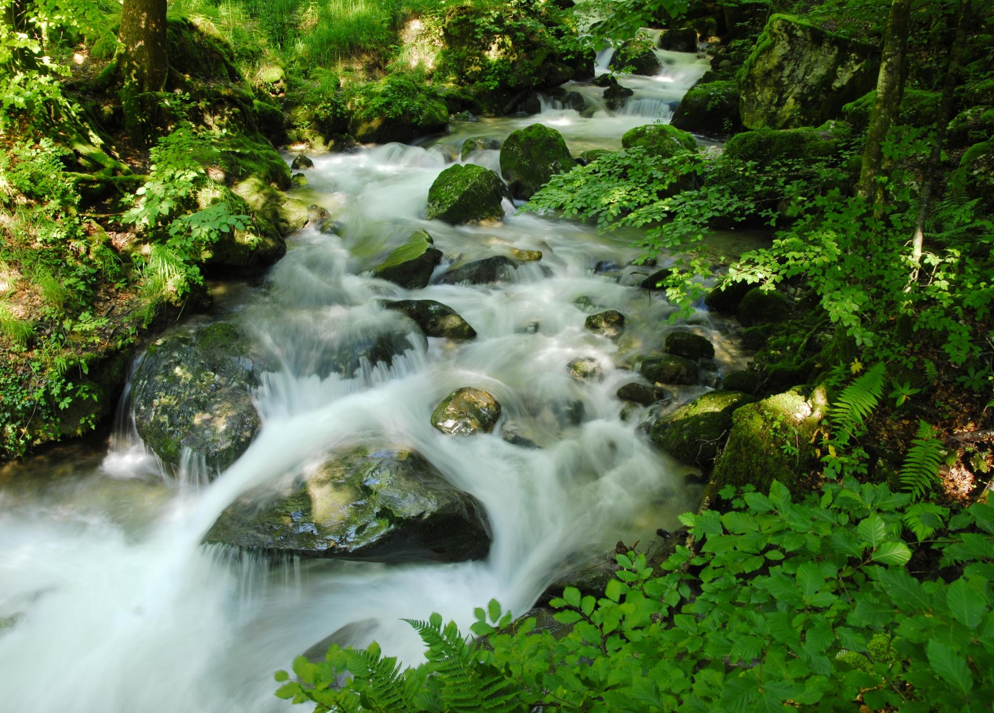 Les plus belles gorges naturelles de Suisse - Gorges de Covatannaz