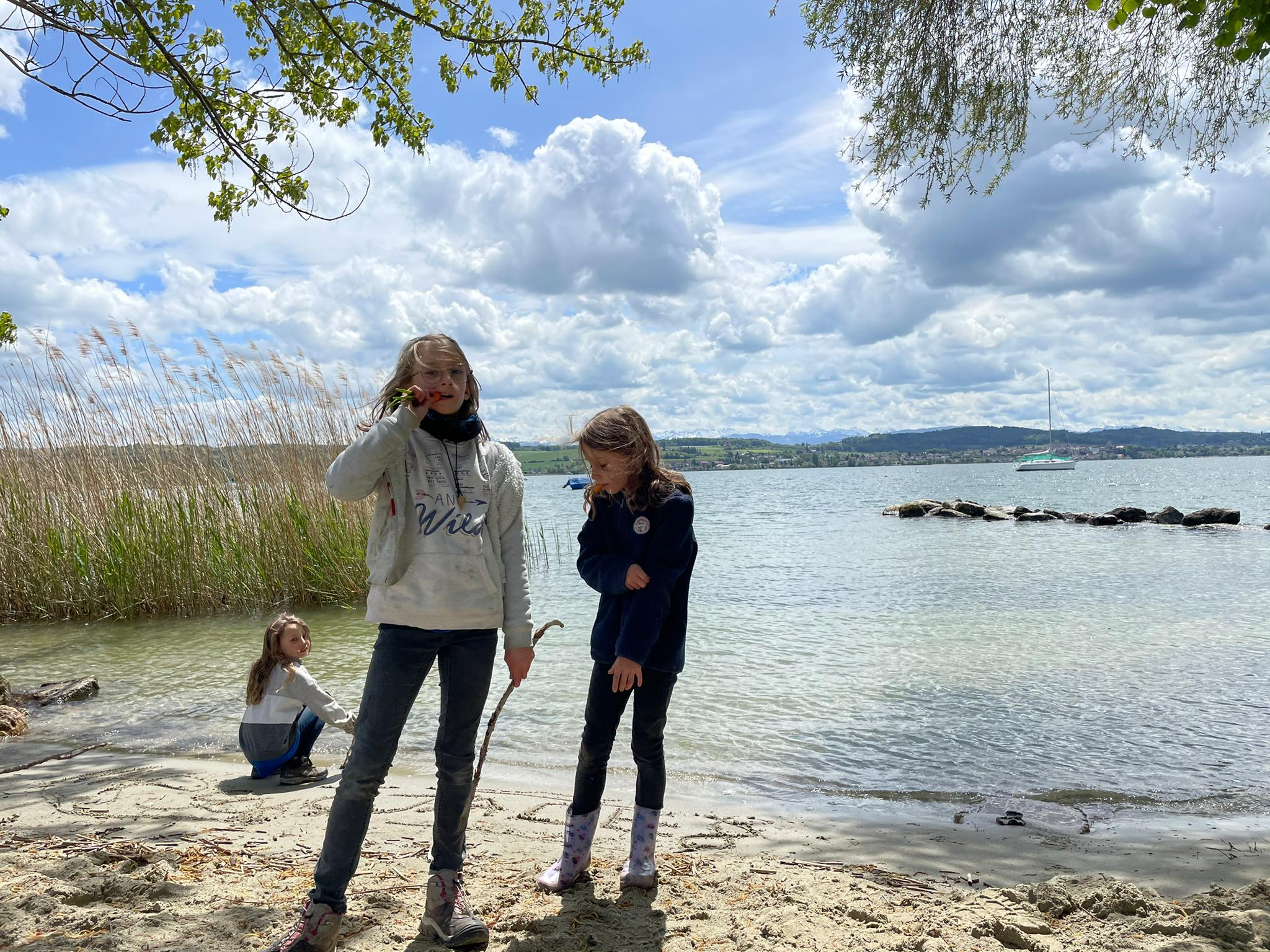 Voyage de la famille Cavadini: Grande Cariçaie